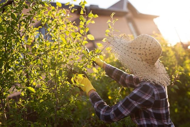 Vista lateral de uma jovem jardineira caucasiana focada corta galhos e folhas desnecessários