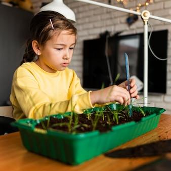Vista lateral de uma menina medindo brotos crescendo em casa