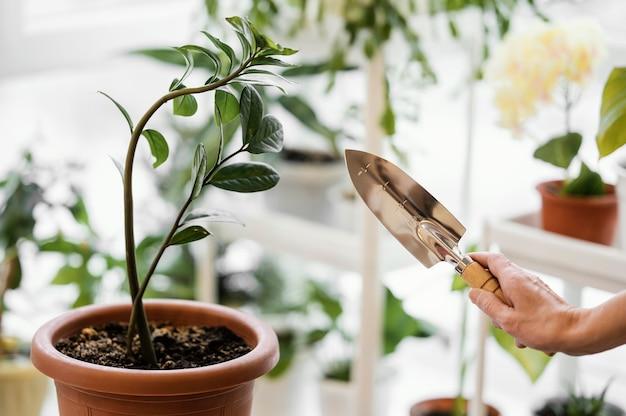 Vista lateral de uma mulher cultivando uma planta e segurando uma espátula