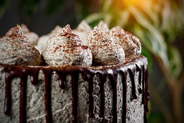 Vista lateral do bolo de creme. chocolate derretido e bolinhas.