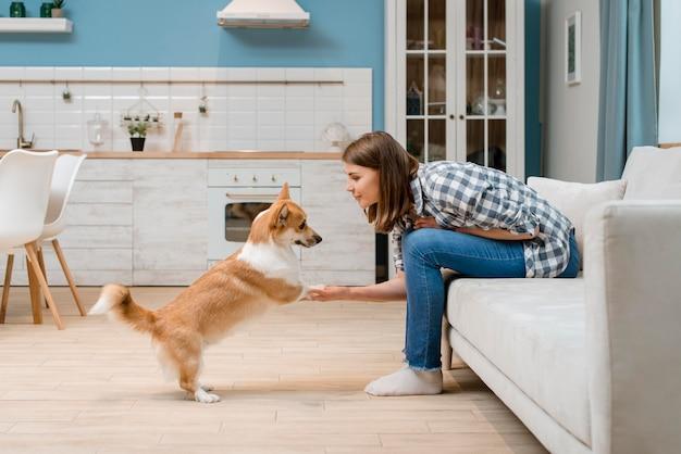 Vista lateral do cão sendo treinado por mulher