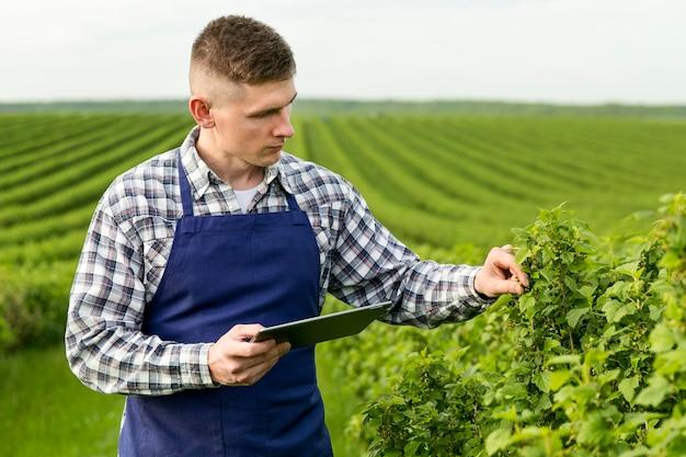 Vista lateral homem na fazenda com tablet