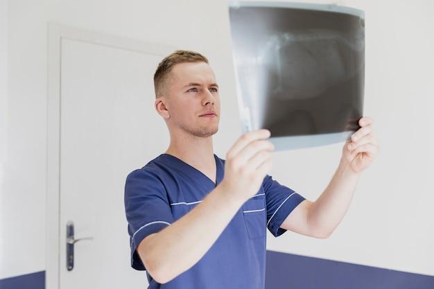 Vista lateral médico olhando para a radiografia do animal