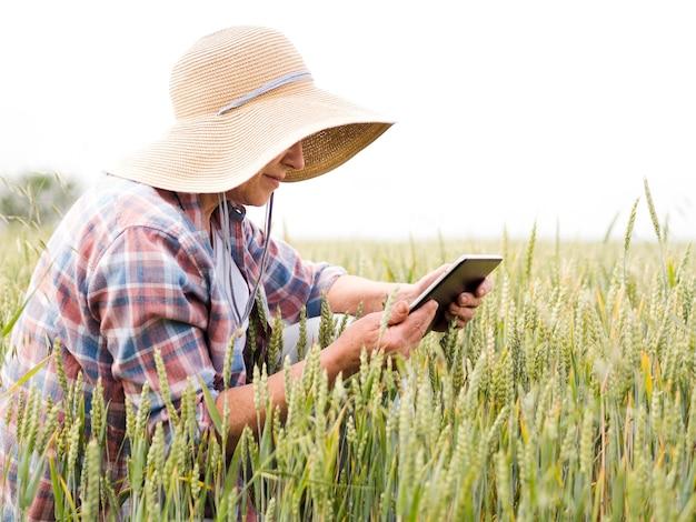 Vista lateral mulher mais velha, sentado em um campo de trigo