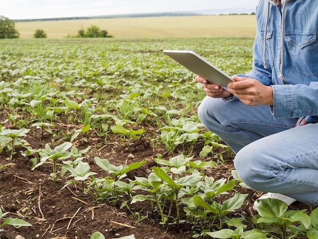 Vista lateral mulher verificando suas plantas com espaço de cópia