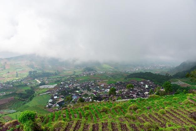 Vista muito agradável dos campos de arroz na ilha de java, dieng plateau, indonésia.