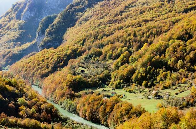 Vista na montanha do rio tara e na floresta em montenegro