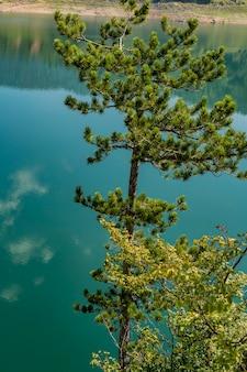 Vista no lago zaovine na sérvia