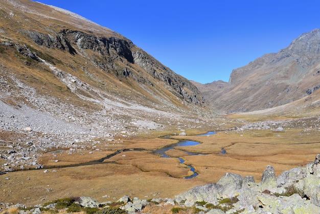 Vista no rio no parque nacional de vanoise, na frança, cruzando a grama amarela na montanha do prado alpino sob o céu azul