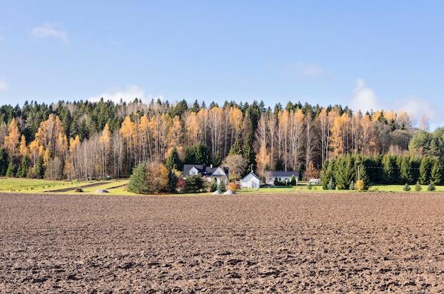 Vista panoramic, de, fazenda, com, ordenadamente, campo arado