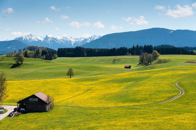 Vista panorâmica da bela paisagem dos alpes