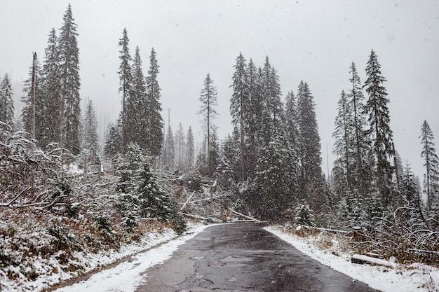 Vista panorâmica da estrada com neve e montanha