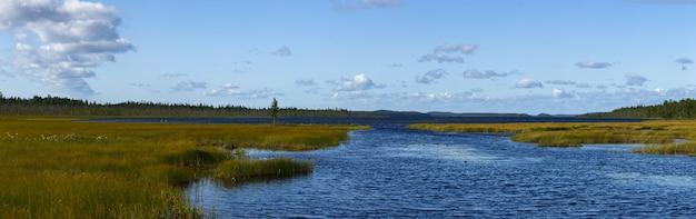 Vista panorâmica da superfície lisa do lago com vegetação