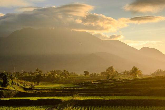 Vista panorâmica da vista matinal da montanha enevoada e do nascer do sol