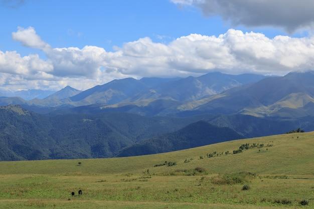Vista panorâmica das montanhas e cenas do vale no parque nacional de dombay, cáucaso, rússia, europa. céu azul dramático e paisagem ensolarada de verão