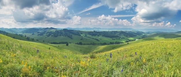 Vista panorâmica de prados floridos na montanha