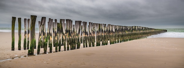 Vista panorâmica de pranchas de madeira verticais na areia de um cais de madeira inacabado na praia