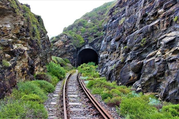 Vista panorâmica de uma ferrovia para um túnel através das rochas cobertas de verde