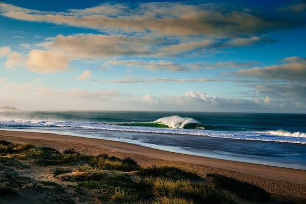 Vista panorâmica de uma praia gramada com ondas e horizonte nublado