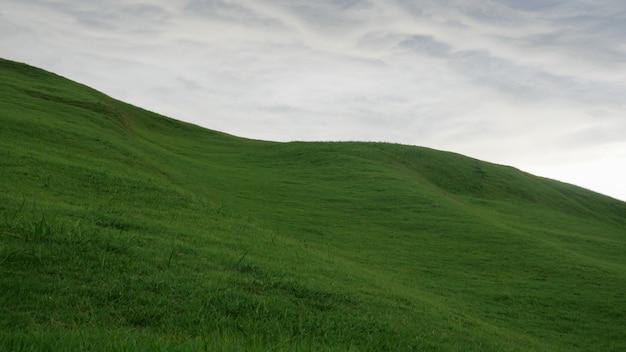 Vista panorâmica do campo gramado contra o céu Foto Premium