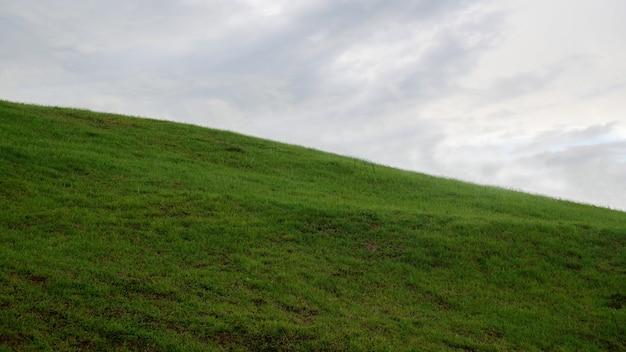 Vista panorâmica do campo gramado contra o céu
