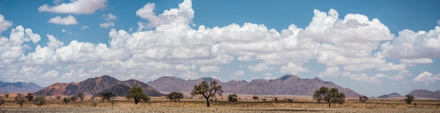 Vista panorâmica do deserto do namibe na namíbia
