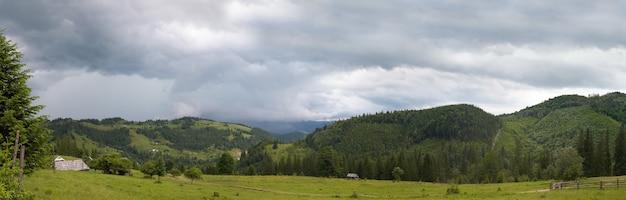 Vista para a montanha de verão com alta árvore de abeto. imagem composta de dois tiros. imagem de costura de três tiros.