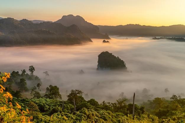 Vista para a montanha e bela névoa do parque nacional de phu langka, tailândia