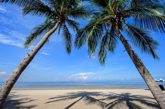 Vista para a praia tropical vazia nas férias quentes de verão. vista do mar com fundo de céu azul.