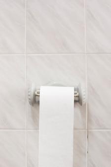 Vista para o banho com rolo de papel higiênico