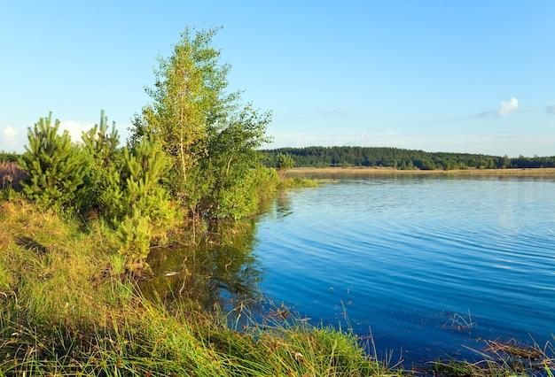 Vista para o lago no verão com pinheiros e um pequeno bosque na margem oposta