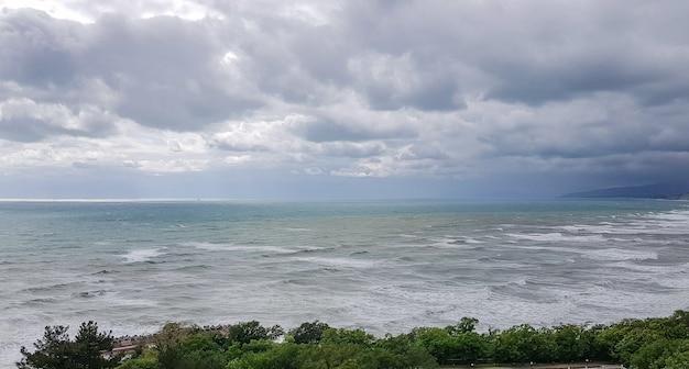 Vista para o mar com ondas e céu, árvores em primeiro plano, manhã, tempo nublado, amanhecer.