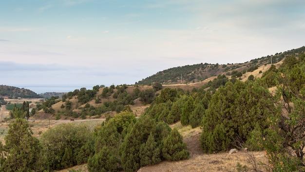Vista para o mar da colina no verão, baía de vesele na crimeia