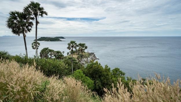 Vista para o mar e palmeiras no miradouro do marco promthep cape em phuket