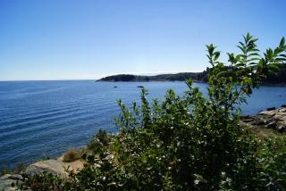 Vista para o mar, ecologia