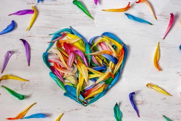 Vista plana com coração de pétalas de flores coloridas em fundo branco