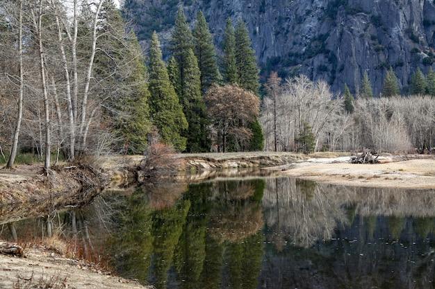 Vista, refletir, água, yosemite, nacional, parque, inverno