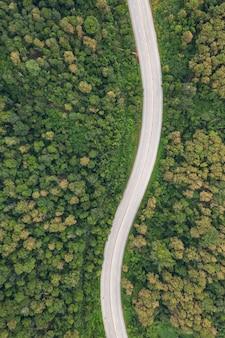 Vista superior aérea da estrada via floresta, vista do zangão