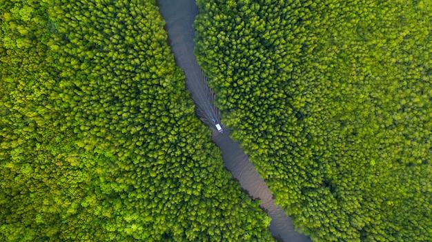 Vista superior aérea do barco no rio na conservação da floresta de mangue na tailândia