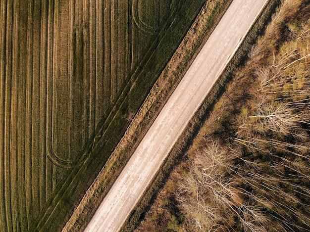 Vista superior aérea em uma estrada rural ao longo da floresta e campo agrícola em um dia ensolarado
