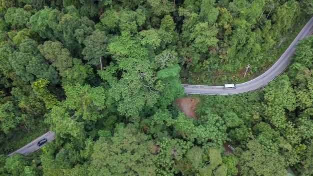 Vista superior aérea vista superior da estrada através da floresta