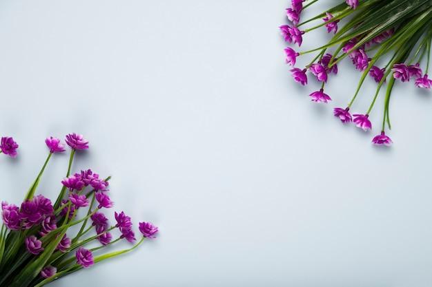 Vista superior buquê de flores em flor