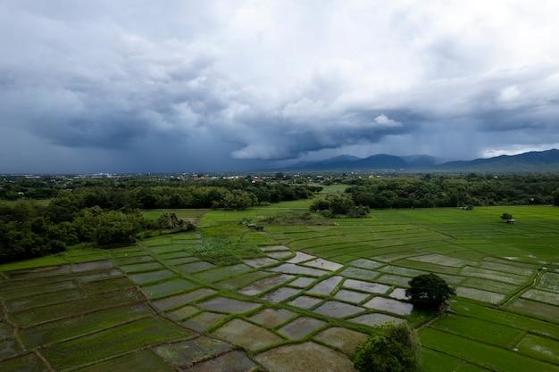Vista superior campo de arroz em socalcos em chiangmai, norte da tailândia