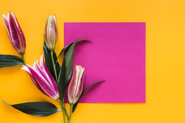 Vista superior colorida flores de lírios reais com pedaço de papel vazio