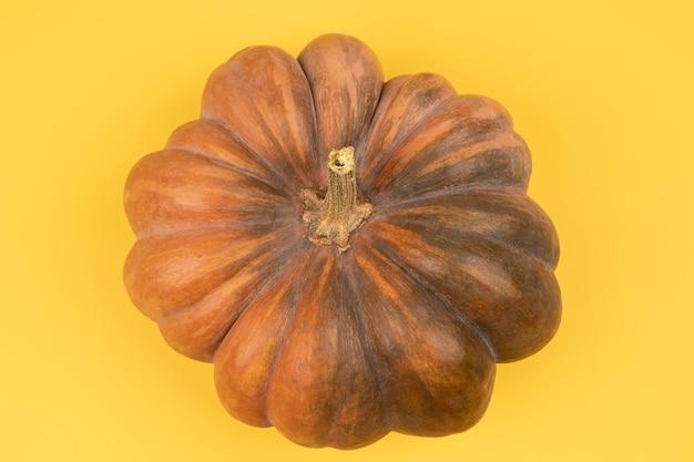 Vista superior conceito de composição de outono fundo de abóboras modelo colheita de ação de graças dia das bruxas