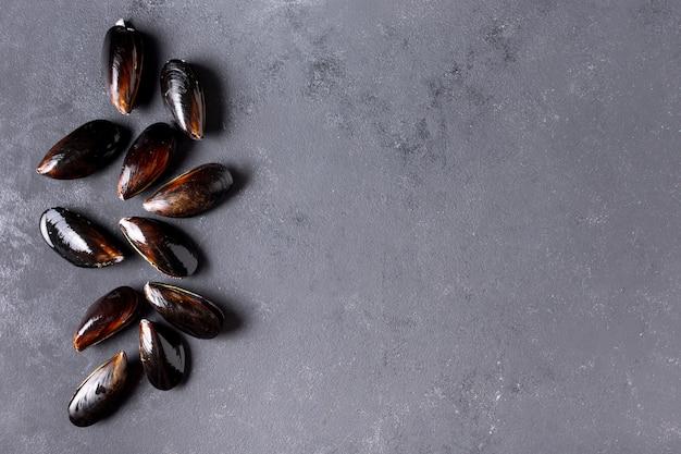 Vista superior conchas de mexilhão com espaço de cópia