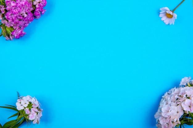 Vista superior cópia espaço flores branco roxo com camomila em um fundo azul