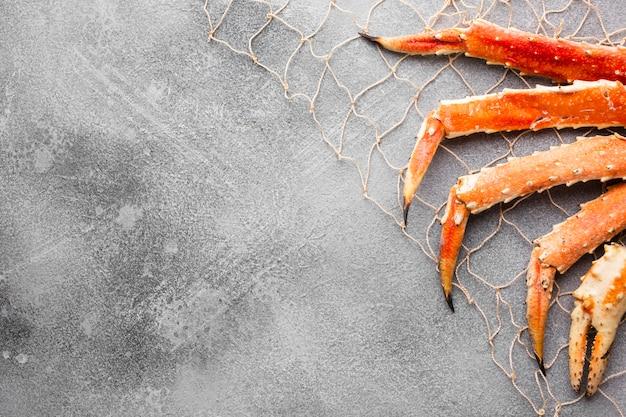 Vista superior da captura de lagosta na rede de pesca