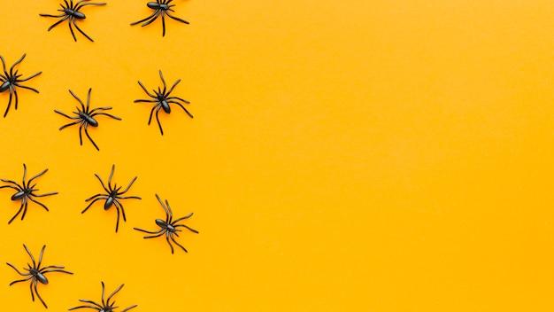 Vista superior da coleção de aranhas com espaço de cópia