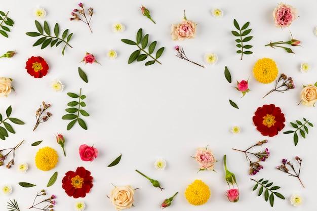 Vista superior da coleção de flores desabrochando